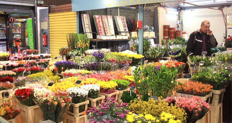 Grossiste fournisseur fruits et l gumes fleurs plante poissons marseille - Grossiste fleurs coupees pour particulier ...